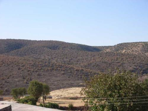 Im Dorf Sare - abgebrannte Felder durch kurdische Nachbarn