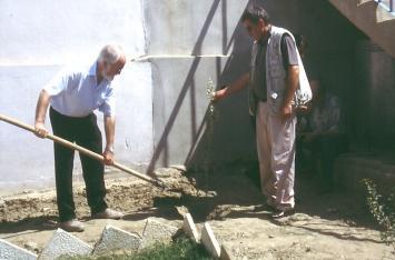 Ein Olivenbäumchen wird gpflanzt im Jahr 2003