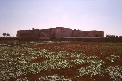 Die Felder rund ums Kloster Mar Gabriel