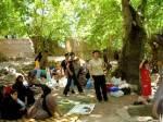 Projekte von Frauen für Frauen - Organisation